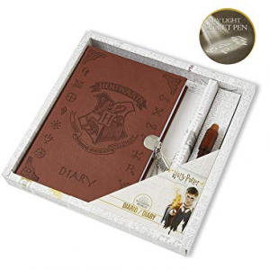 harry potter secret diary